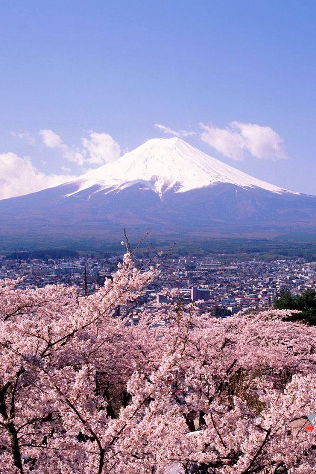 Подготавка по японски език с Мами Коджима за N5, N4, N3, N Advanced