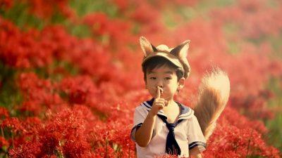 Чудесата на Япония .Летен курс за деца от 1 до 4 клас от 11 юни до 27 юни с японски преподавател